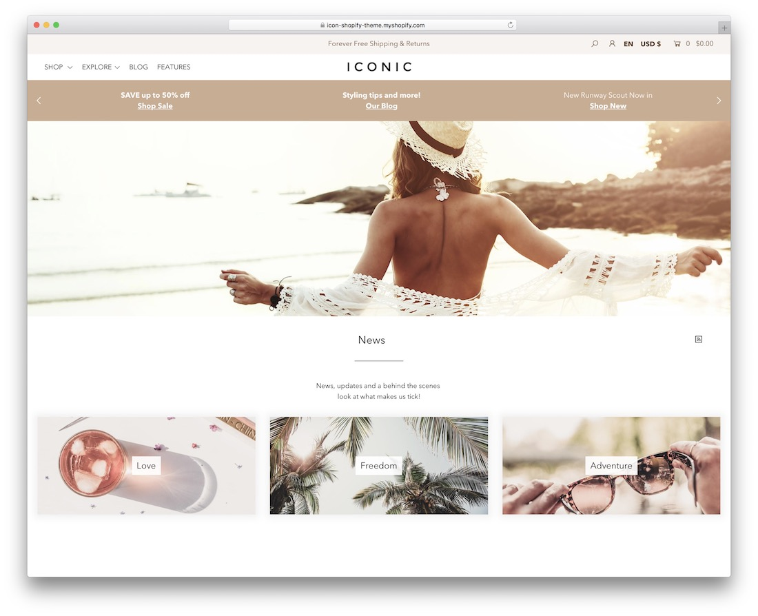 icon shopify blog theme