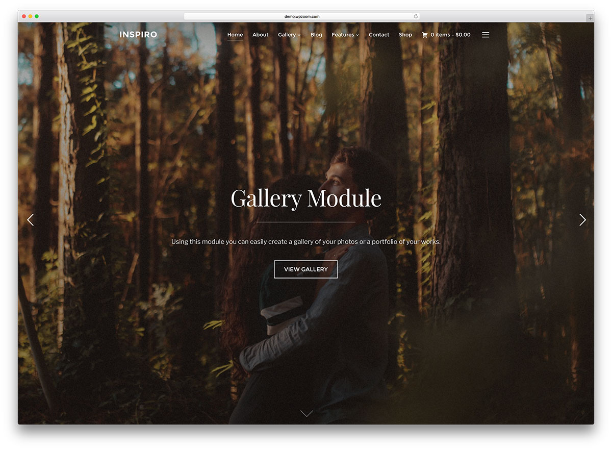 20 Best WordPress Themes for Photographers 2017 - Colorlib