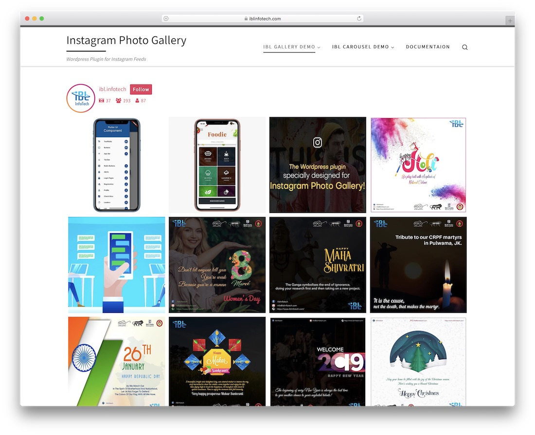 instagram photo gallery wordpress plugin