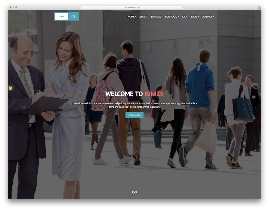 ionize professional website template