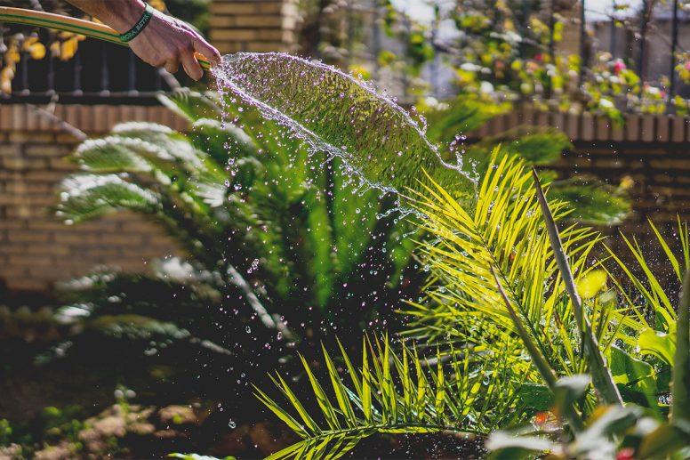 Gardening And Landscaping WordPress Themes