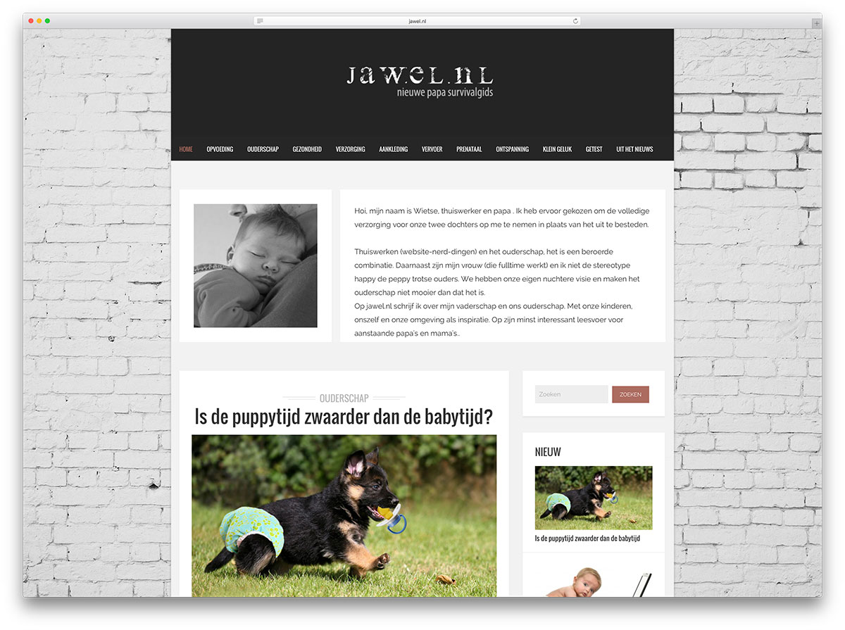 jawel-personal-idea-blog-with-wordpress