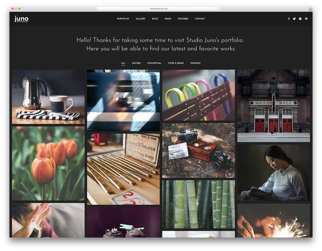 juno seo friendly website template