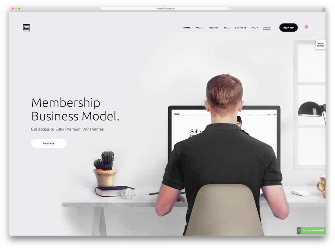 kallyas membership wordpress theme