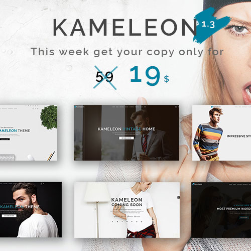 Kameleon theme on colorlib