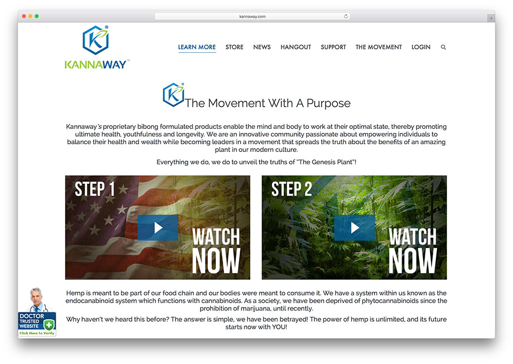 kannaway-business-consultation-site-example