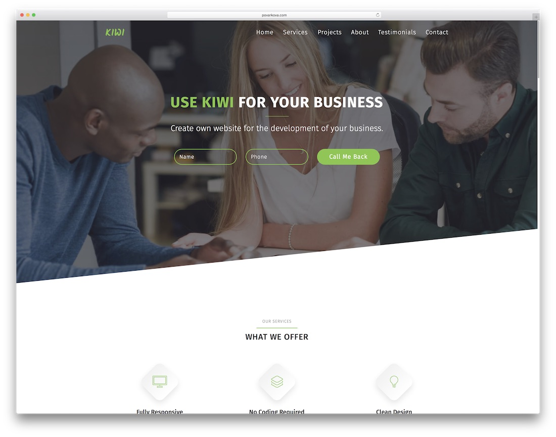 kiwi clean adobe muse template