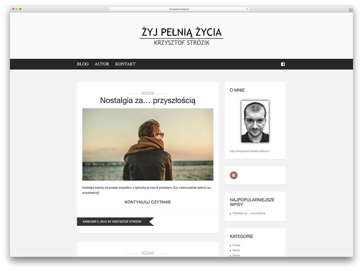 krzysztof-strozik-minimal-personal-blog-using-brixton