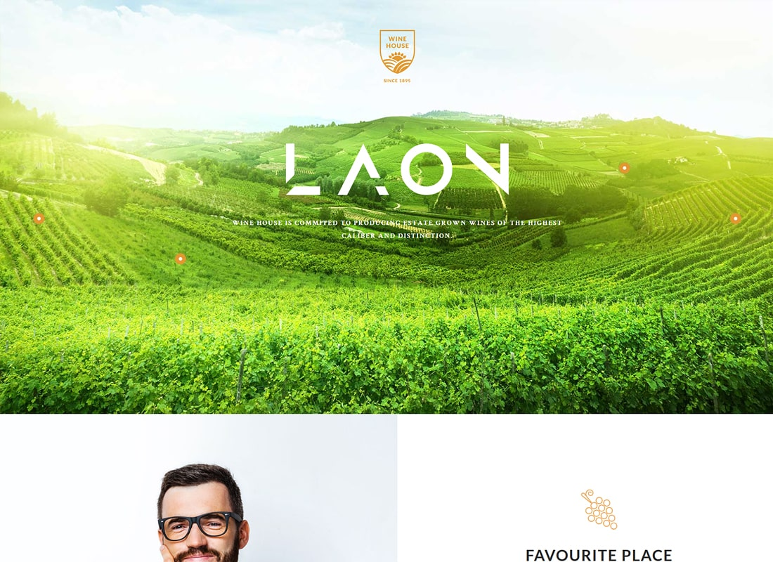 Laon | Wine House, Winery & Wine Shop HTML Template