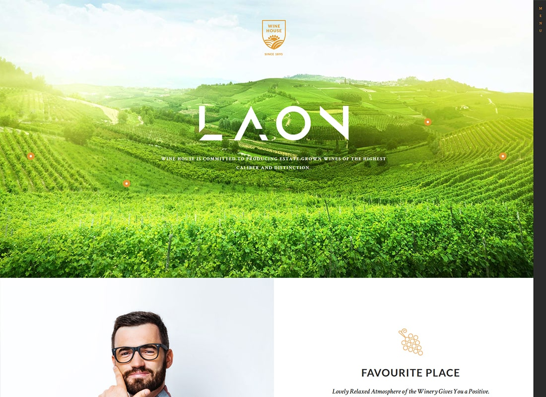 Laon | Wine House, Winery & Wine Shop WordPress Theme