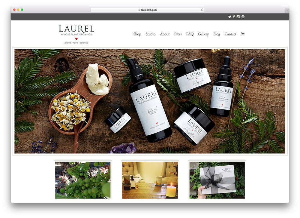 laurelskin-organic-food-website-using-total-theme
