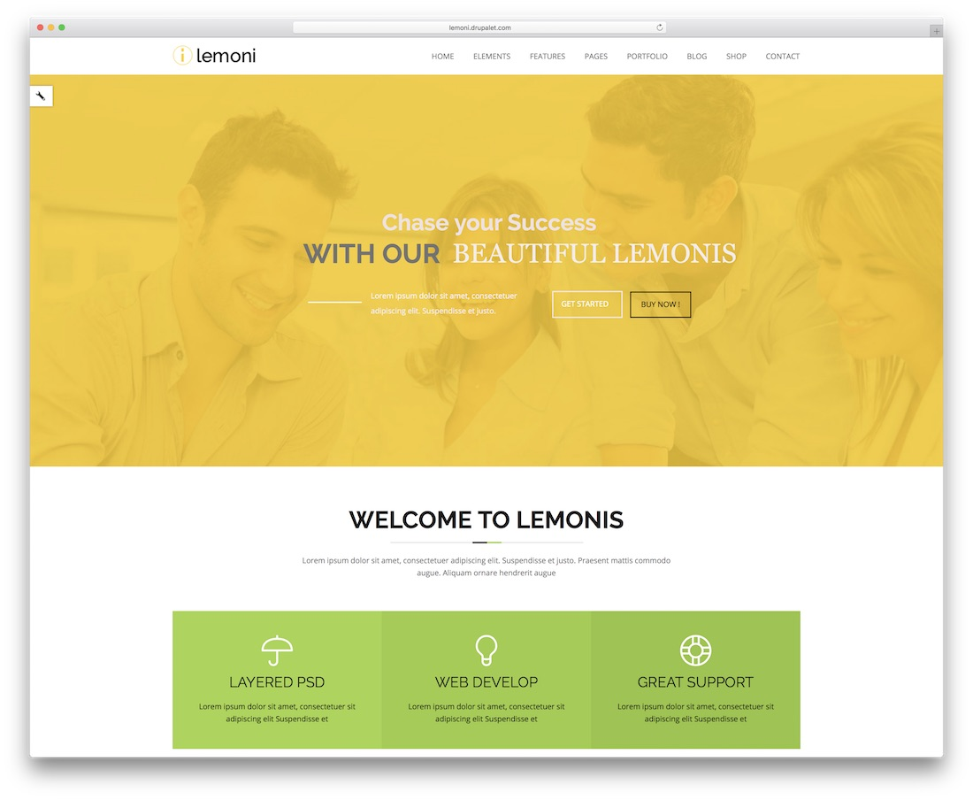 lemoni drupal business template