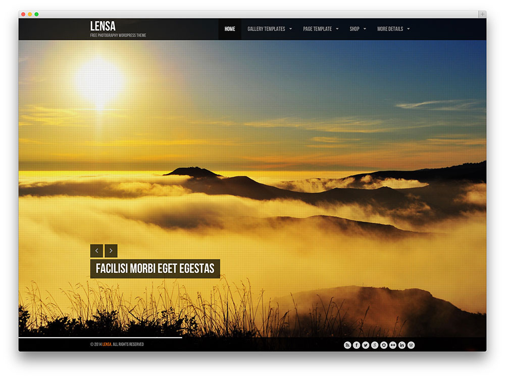 Lensa Photography Theme