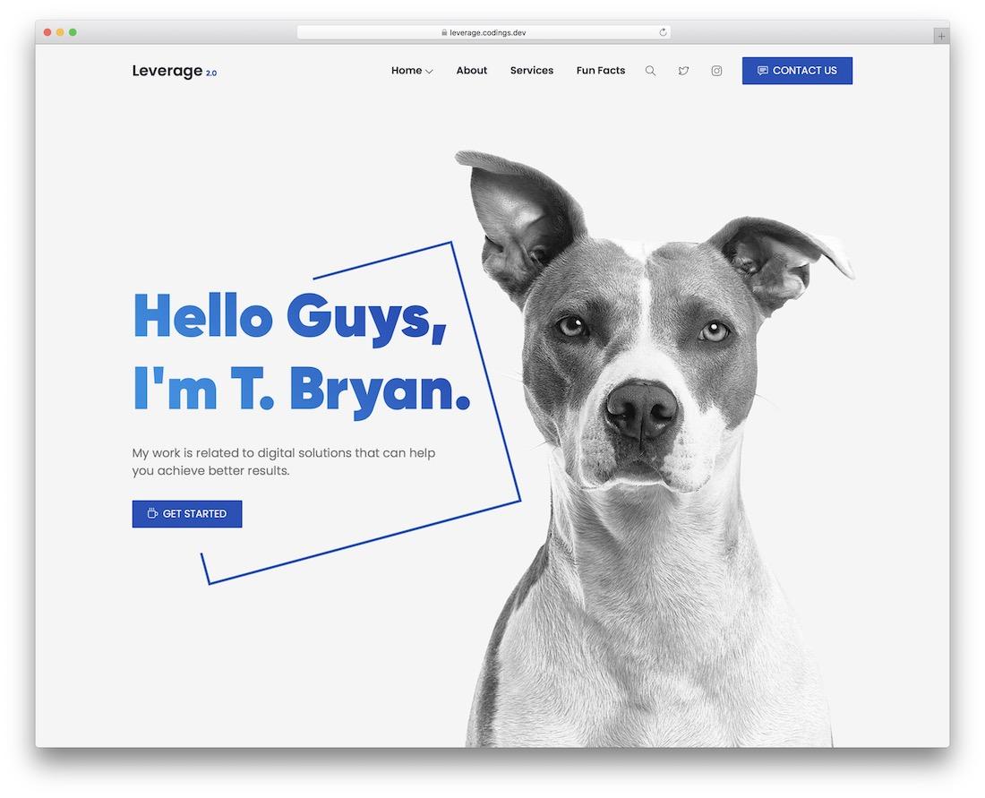 leverage creative wordpress theme