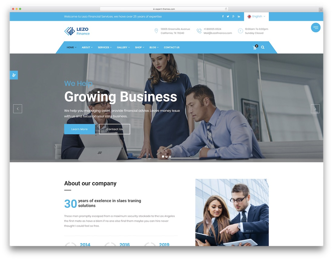 lezo financial website template