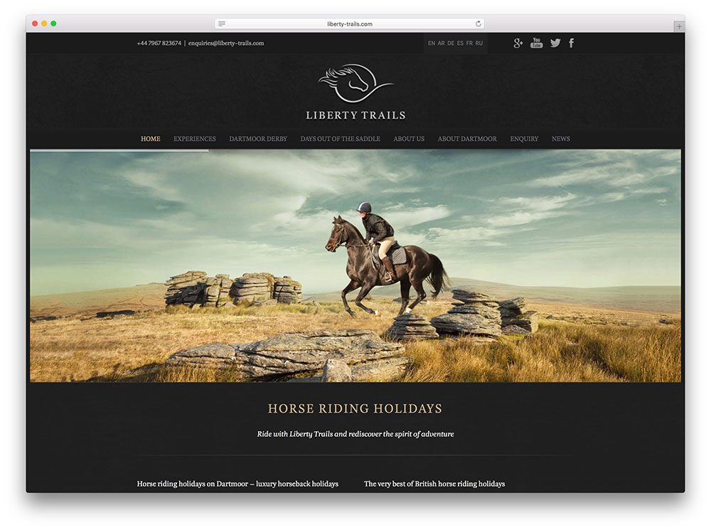 30 Awesome Examples of the Avada WordPress Theme In Action