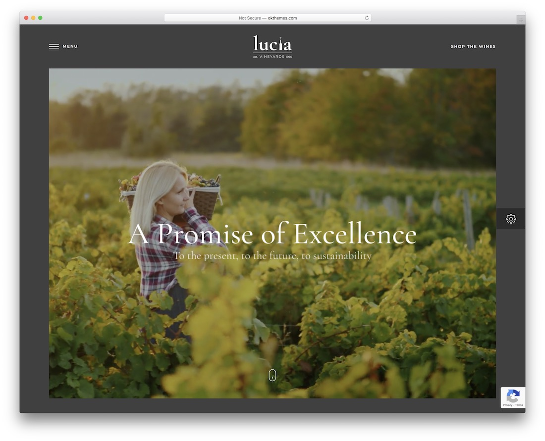 lucia wine wordpress theme