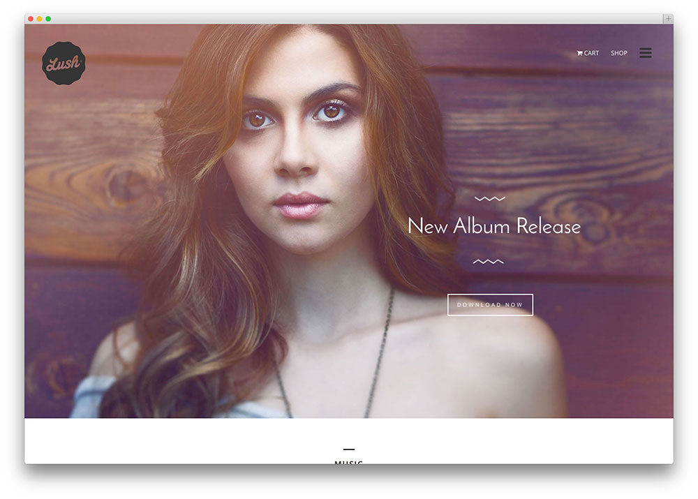 lush innovative multipurpose musician theme