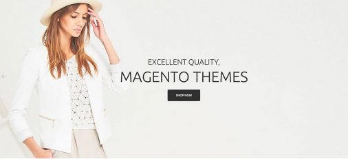 Magento Ecommerce Themes