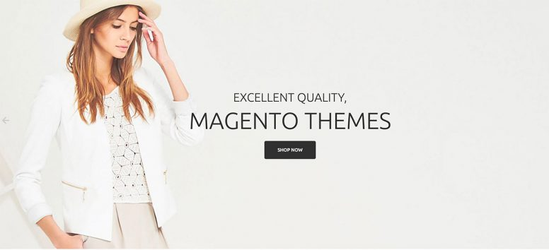 Become E-commerce Master With Best Magento Themes Of 2017