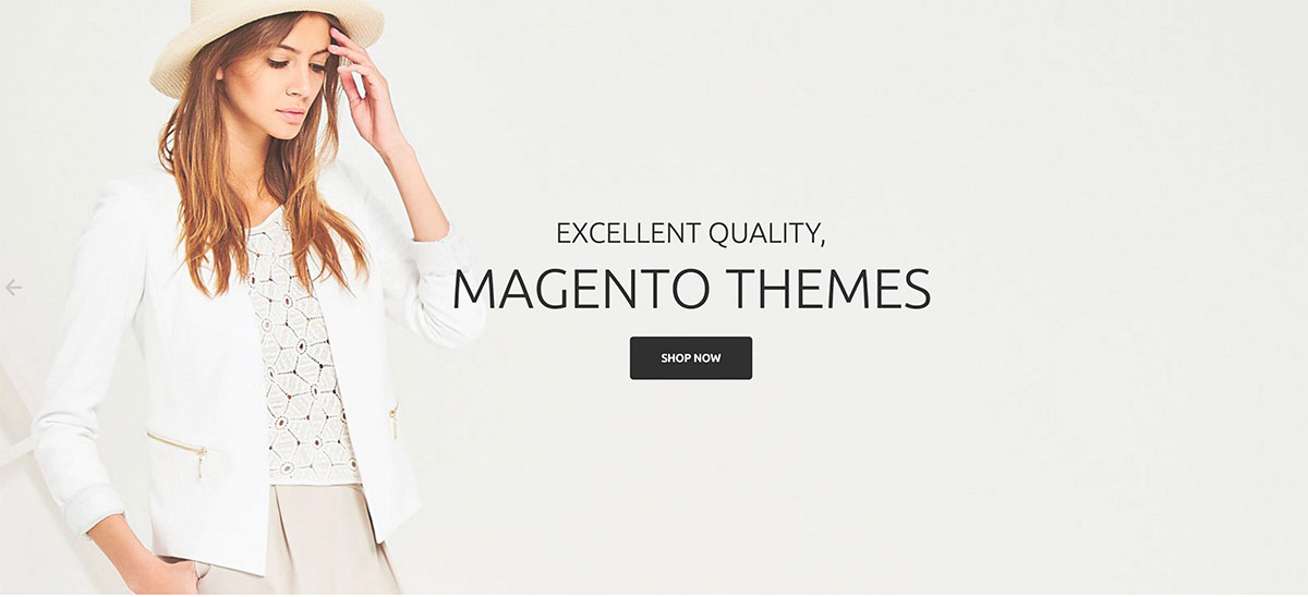 Become E-commerce Master With Best Magento Themes Of 2019
