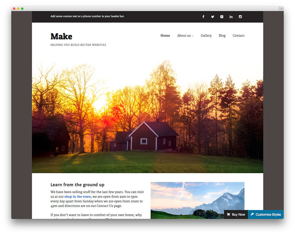 Make - free business theme
