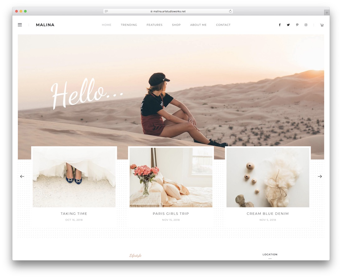 malina wordpress theme with slider