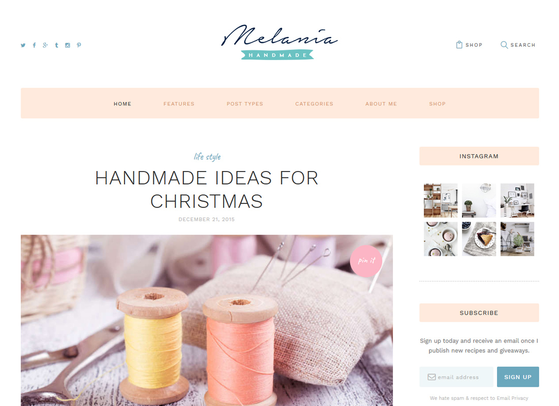 Melania   Handmade Blog & Shop WordPress Theme