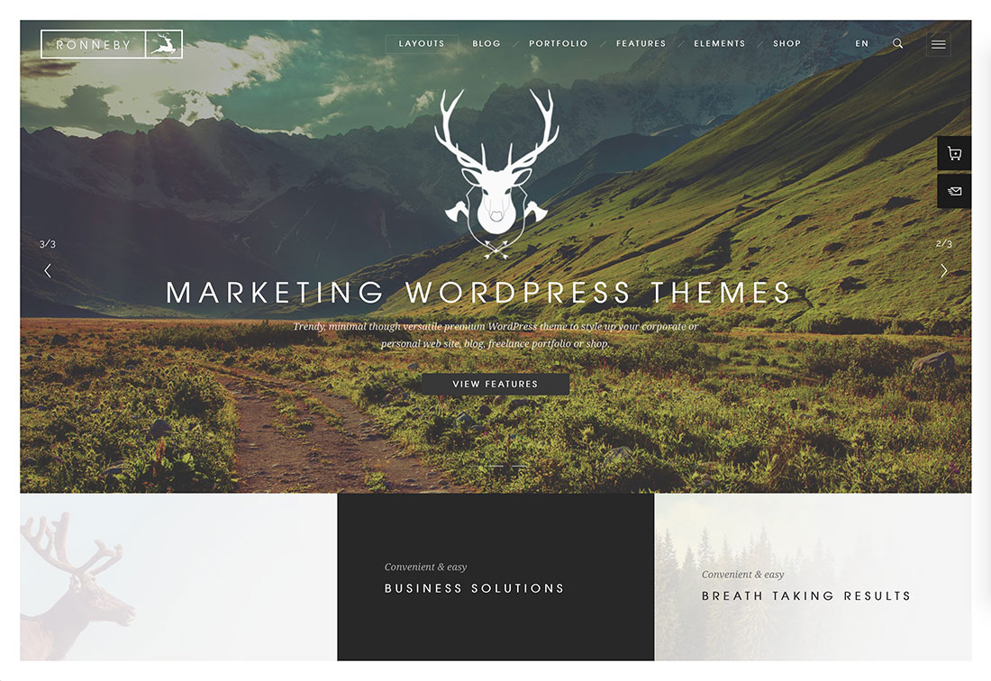 22 Most Popular Marketing WordPress Themes For Startups Landing Pages