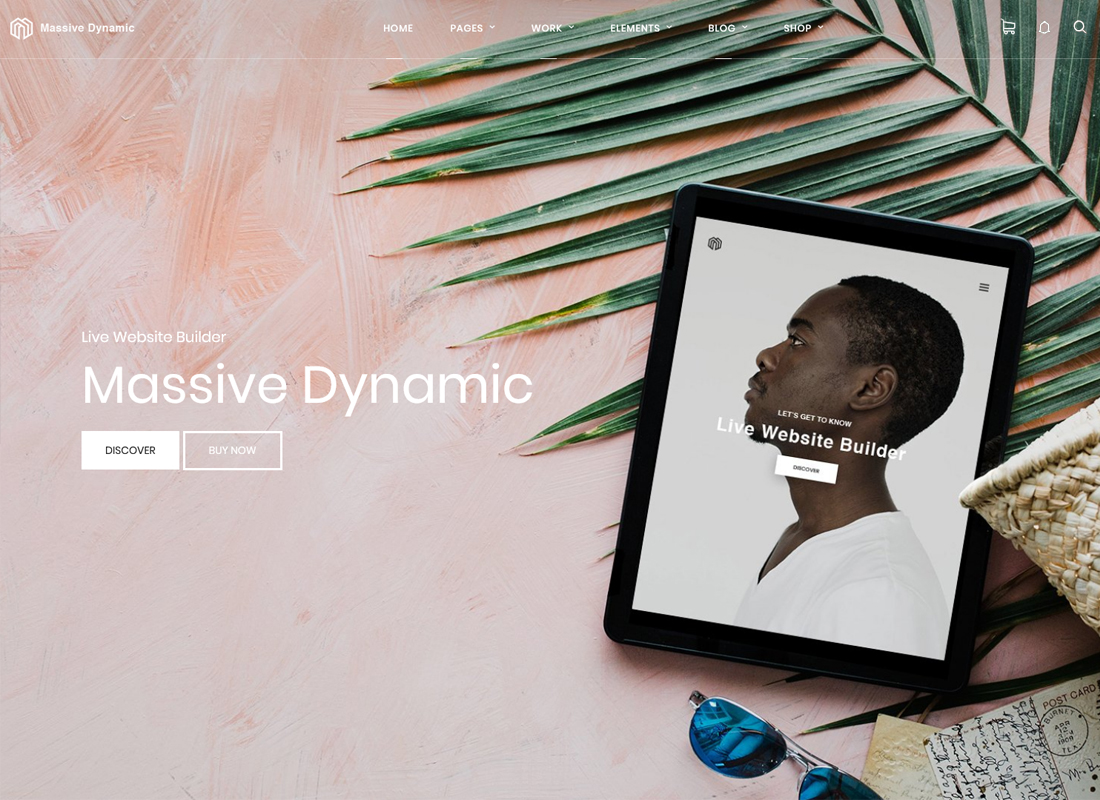 massive-dynamic-wordpress-website-builder