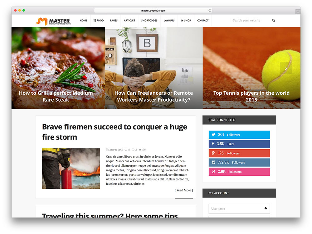 master - simple blogging wordpress theme