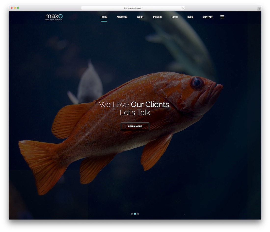 maxo business website template