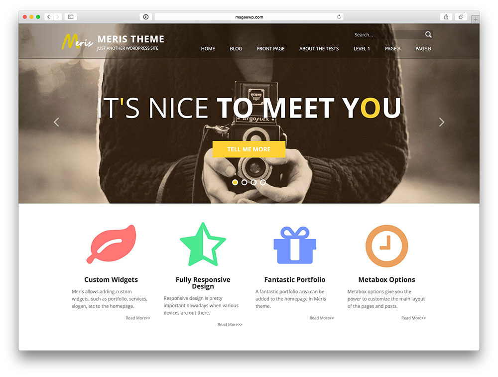 Meris corporate theme