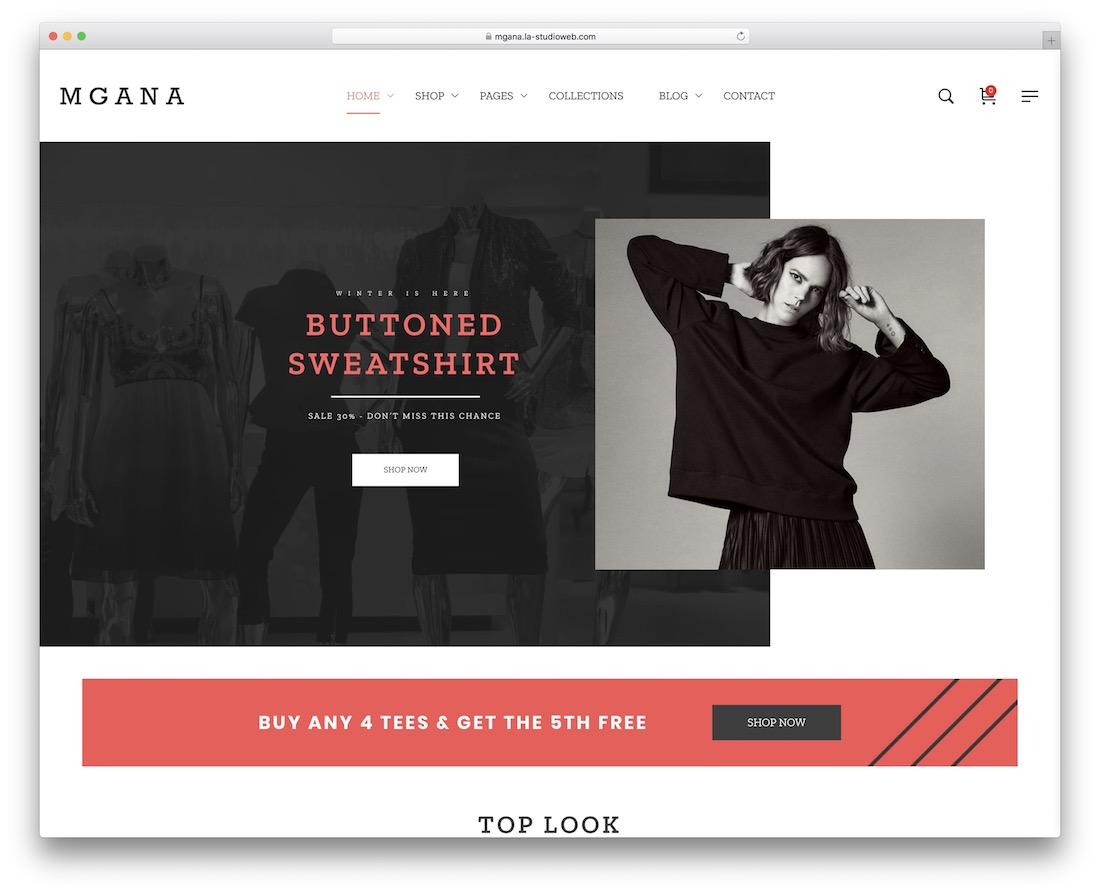 mgana parallax wordpress theme