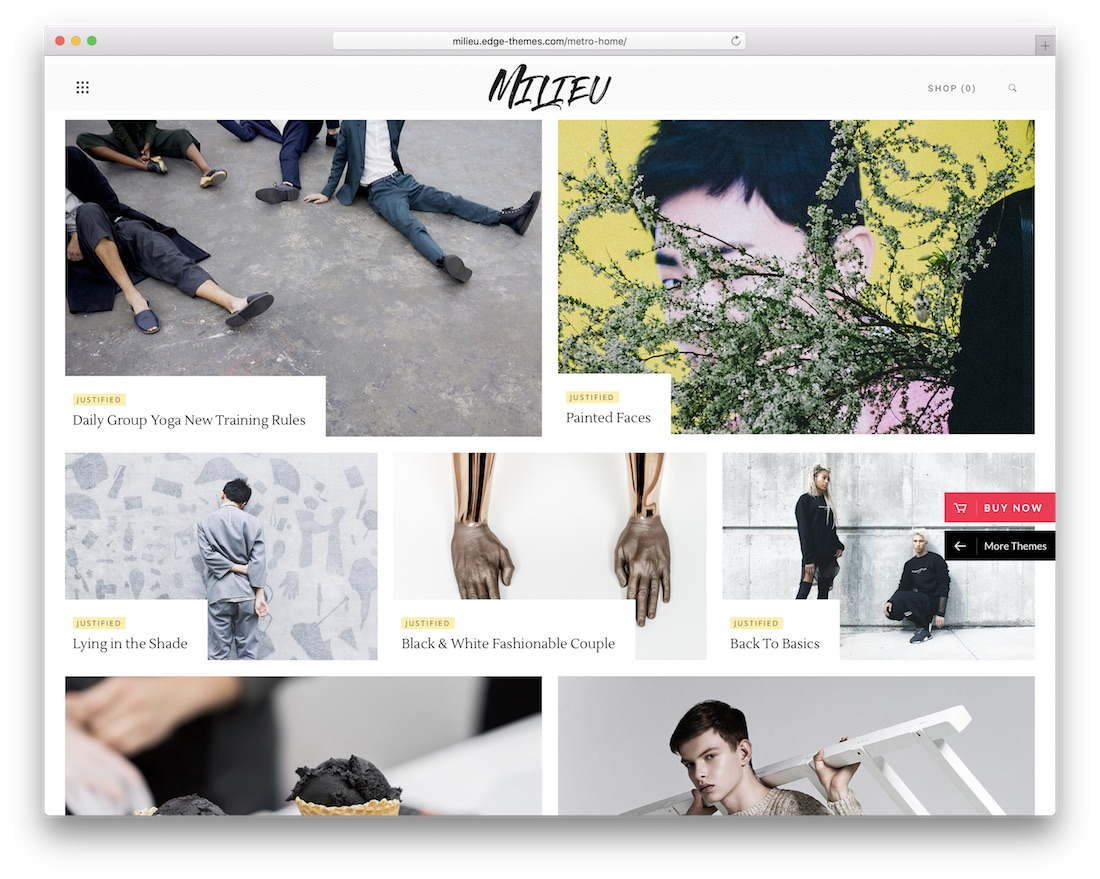 milieu art wordpress theme