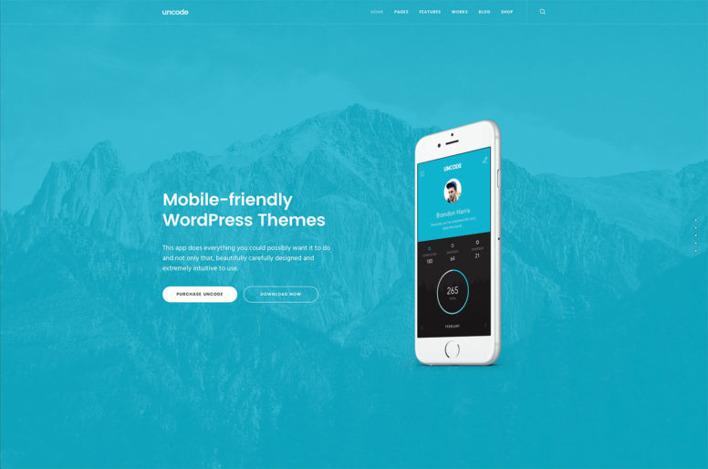 Top 20 Mobile Friendly WordPress Themes To Help With SEO And Website Usability On Mobile 2016