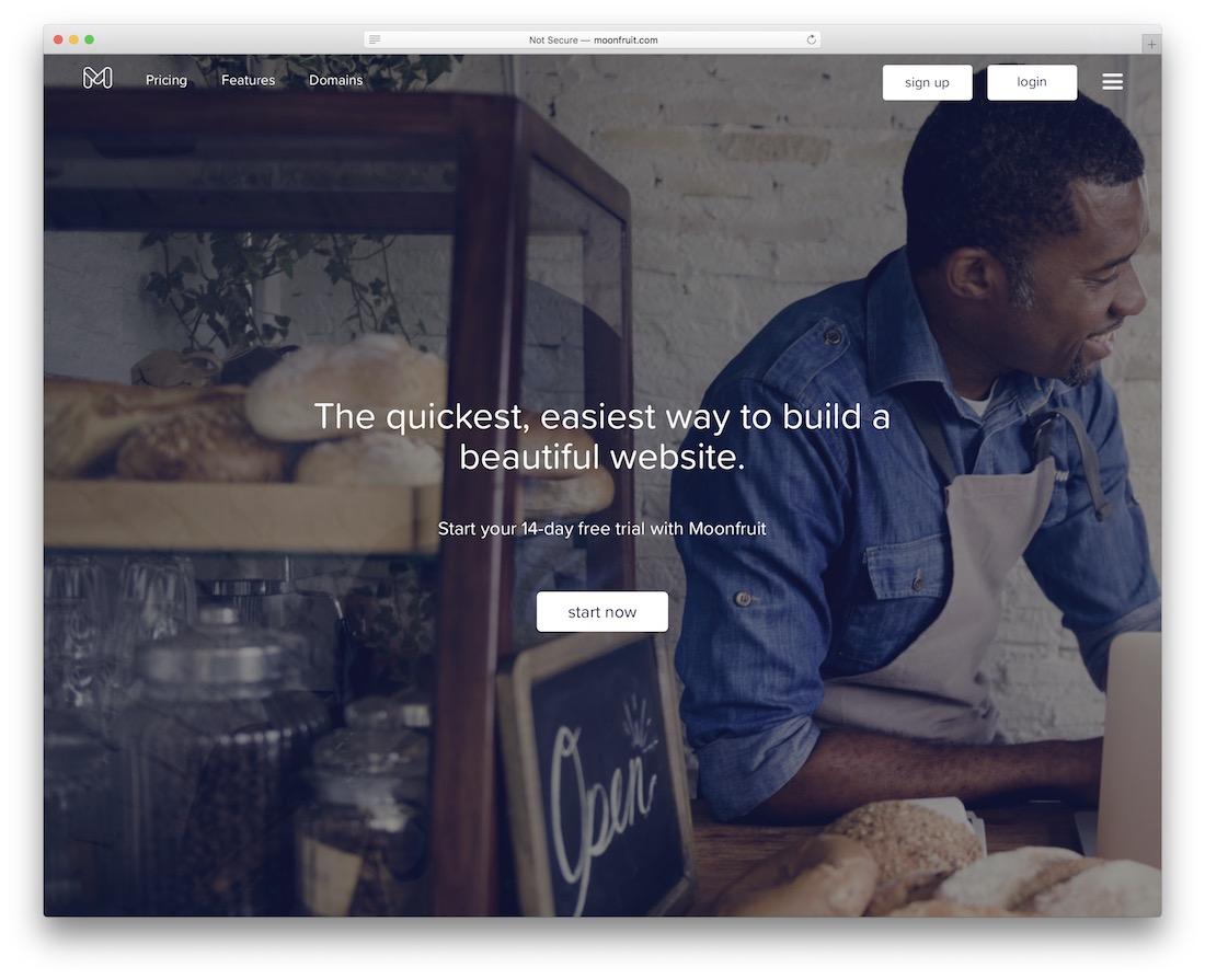 moonfruit build portfolio website
