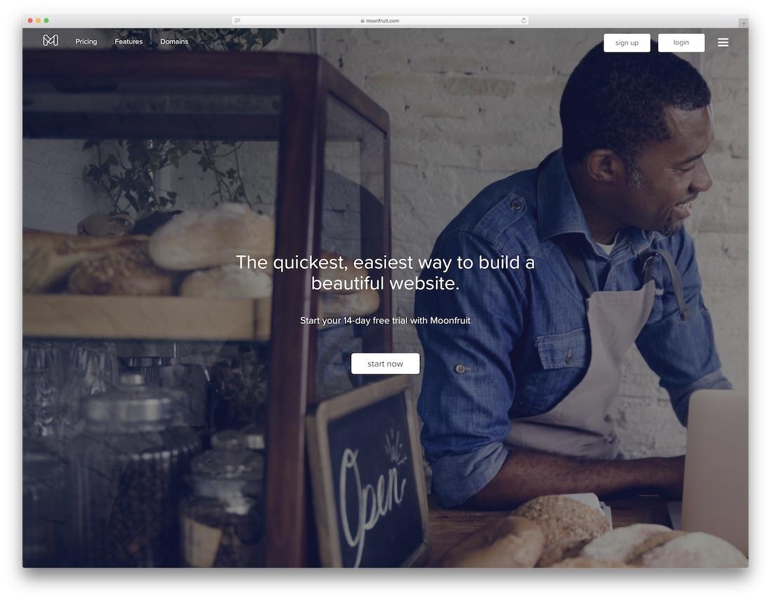 moonfruit drag and drop website builder