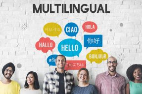 Multilingual-WordPress-themes
