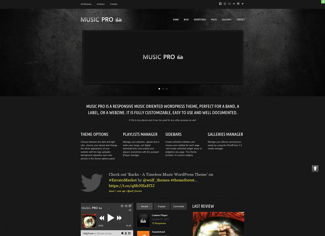 Music Pro   Music Oriented WordPress Theme