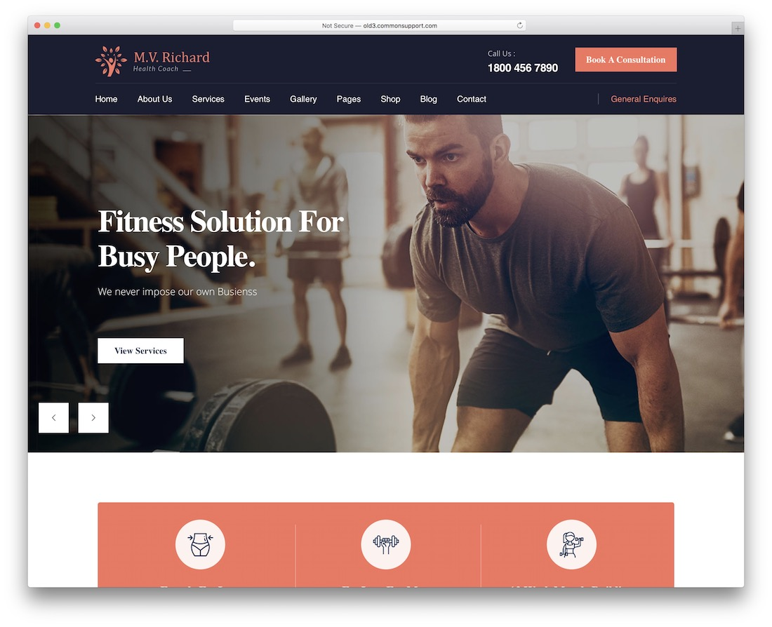 mv richard wordpress fitness theme