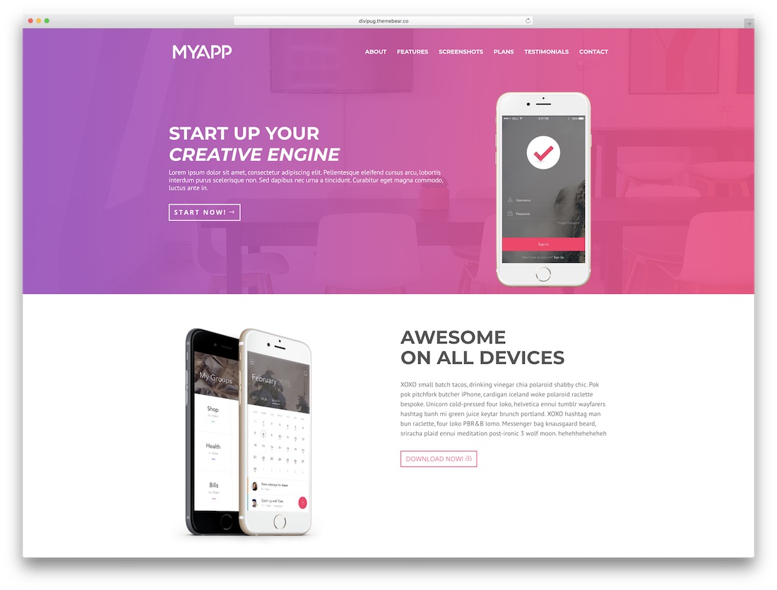 myapp divi child theme