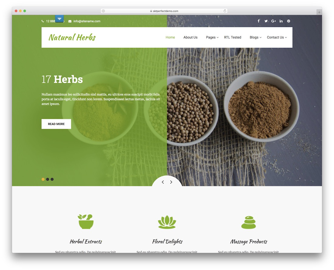 natural herbs lite free wordpress theme