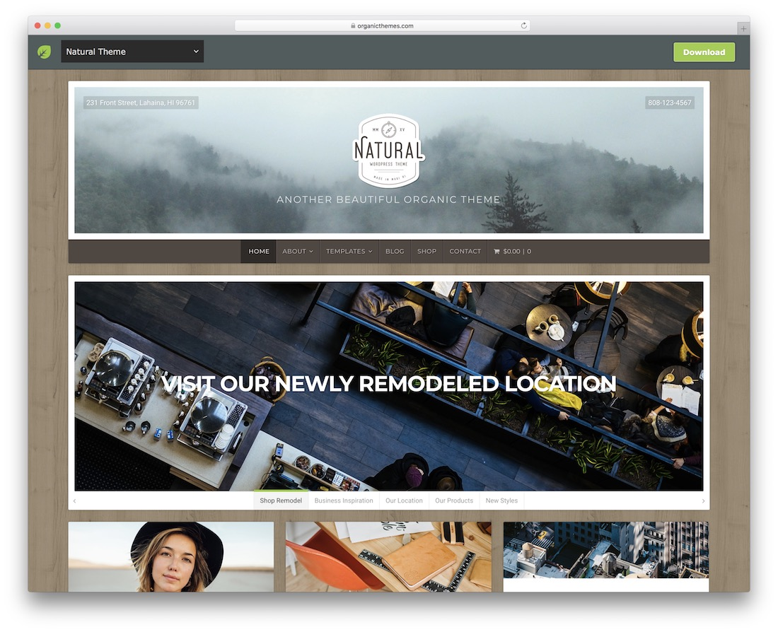 natural lite free wordpress theme
