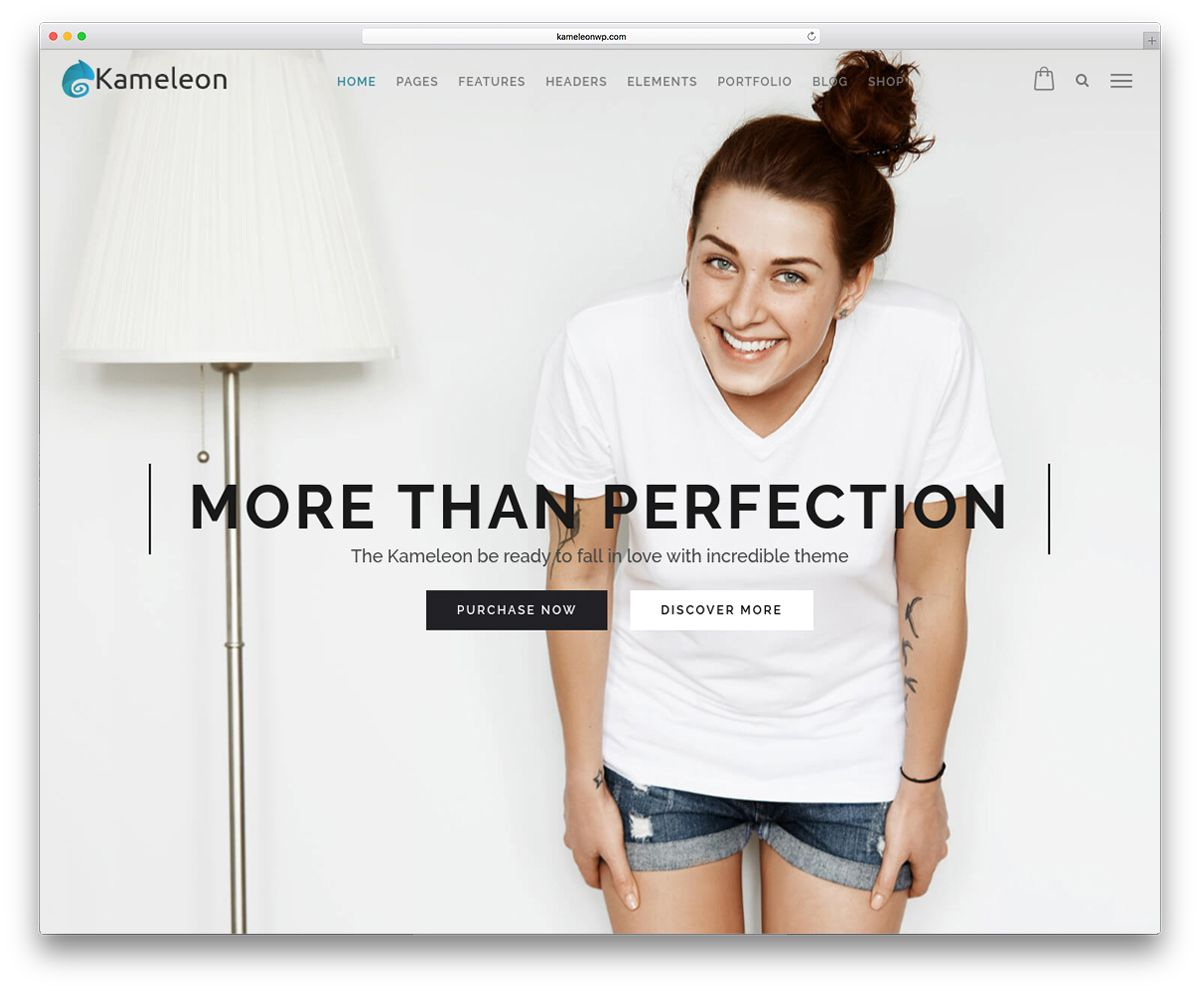 new-kameleon-fullscreen-digital-agency-theme2
