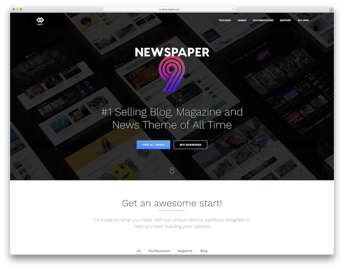 Newspaper Theme Examples