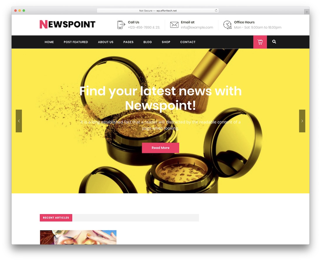 newspoint wordpress instagram theme