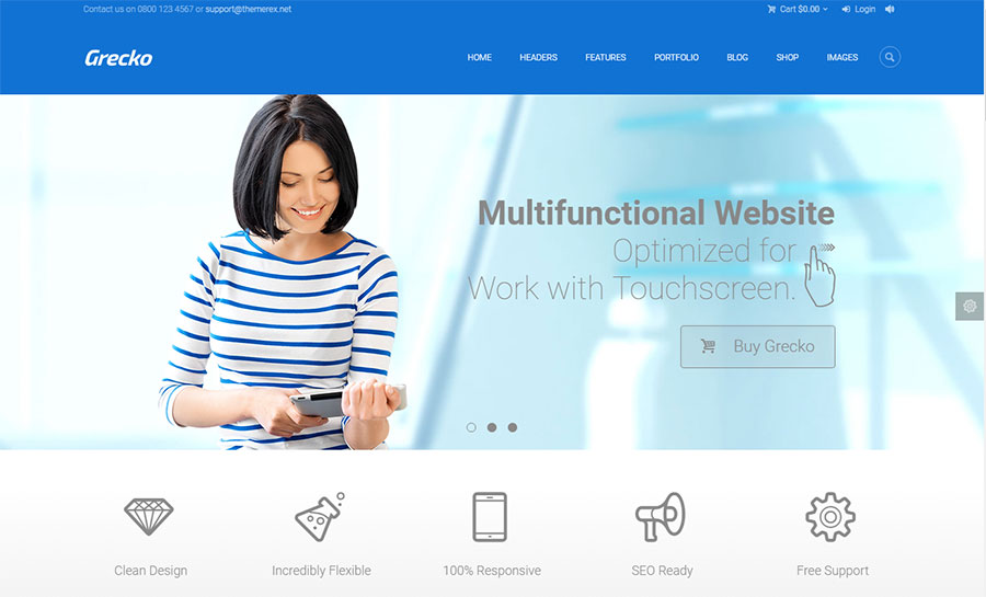 Niche Vs. Multipurpose – Which WordPress Theme To Choose?