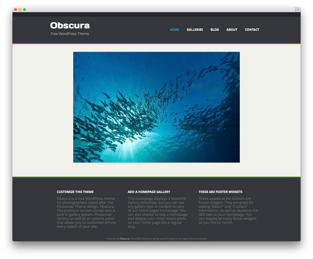Google homepage themes gallery - Obscura Gallery Style Website
