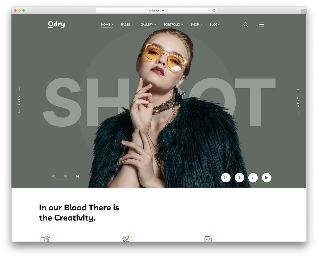 odry fast loading wordpress theme